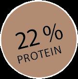 22 % protein